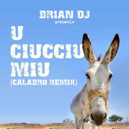 Brian dj - U Ciucciu Miu (calabro Remix)