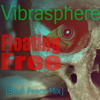Vibrasphere - Floating Free (Skull Peace Mix)