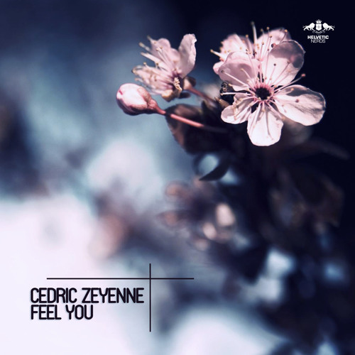 Cedric Zeyenne - Feel You (Radio Edit)