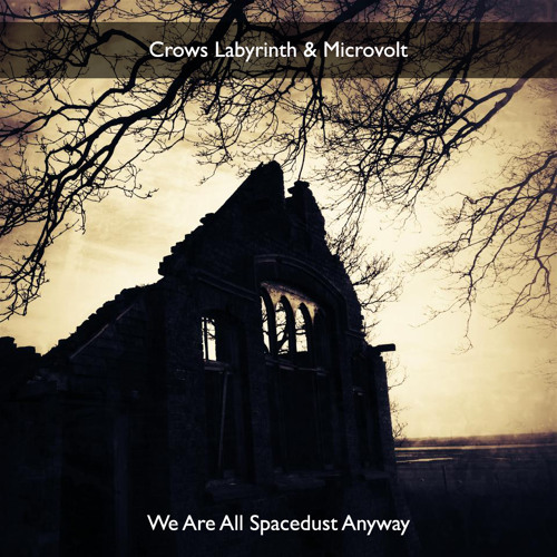 Crows Labyrinth & Microvolt - We Are All Spacedust Anyway