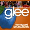 Homeward Bound Home - Glee Cast (Acapella)