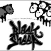 Black sheep is my name anger NOT seriously haha but true lyrics, my life!