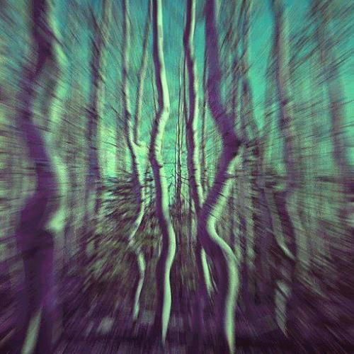 Therapist-Winter Sentinels-Promo Set- Tree of Life Festival.