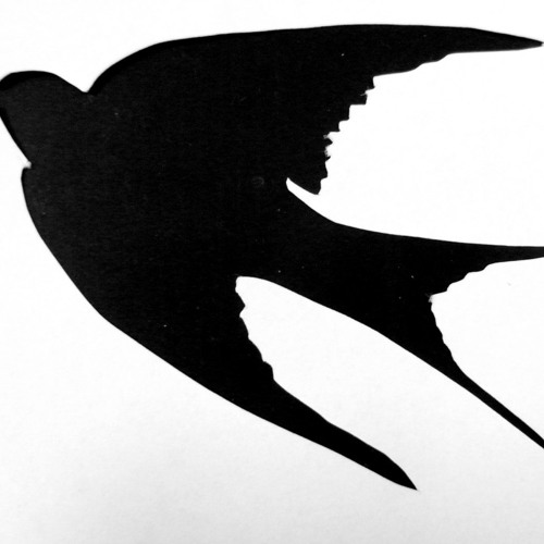 The Swallow's Silhouette by Shirley Ly