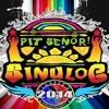 SINULOG CEBU FESTIVAL 2014 ( DJ BEST 130  )