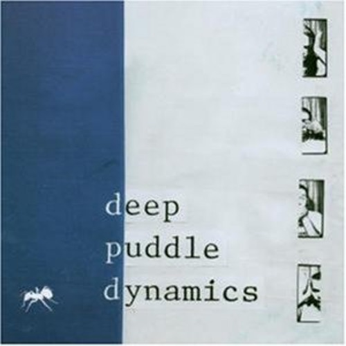 Deep Puddle Dynamics - The Scarecrow Speaks