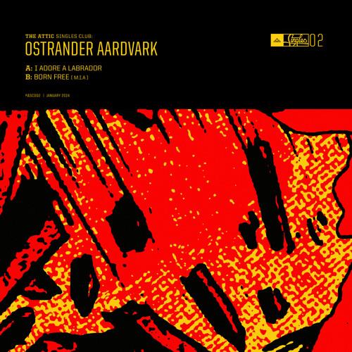 B: Ostrander Aardvark - Born Free (M.I.A cover)