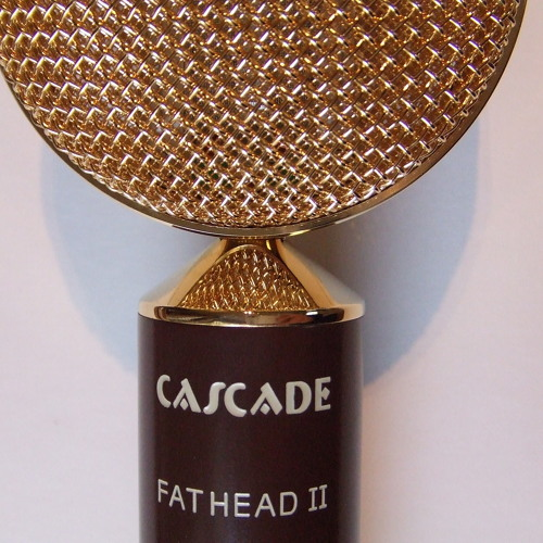 Cascade Fatheads Drum Overheads