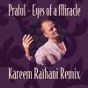 Eyes Of A Miracle (Praful) - Kareem Raïhani Remix