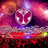 Set de Tomorrowland 2013