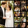 Love Death Birth - Twilight Breaking Dawn (Part 1)