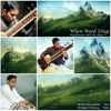 When Wood Sings - Instrumental Sitar and Tabla Album Preview