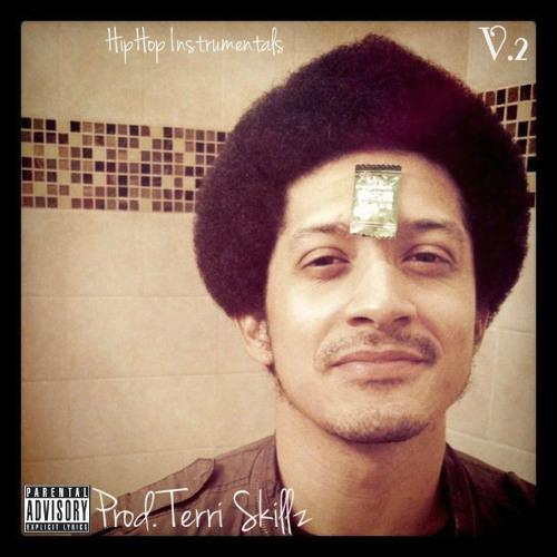 Hip Hop Instrumental Bpm.91 (Prod. By Terri Skillz) FREE DOWNLOAD( Album Available On Datpiff)