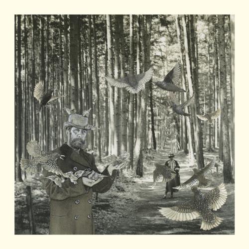 Snow Ghosts - Secret Garden (Richard Skelton Remix) (Clip)