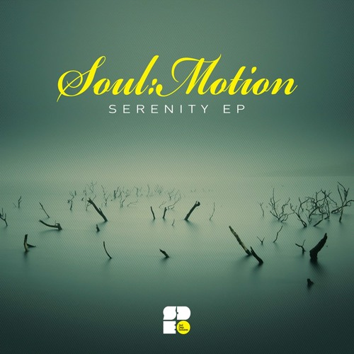 Soul:Motion - Serenity (Forthcoming On Soul Deep Exclusives)