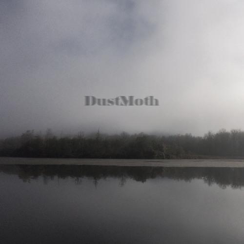 Dust Moth - Cusp