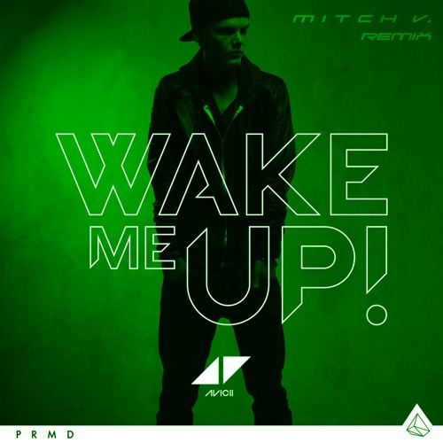 Avicii- Wake Me Up (Mitch V. Remix)