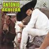 Antonio Aguilar corrido de caballos mix