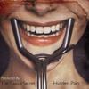 Hidden Pain ( Demo )
