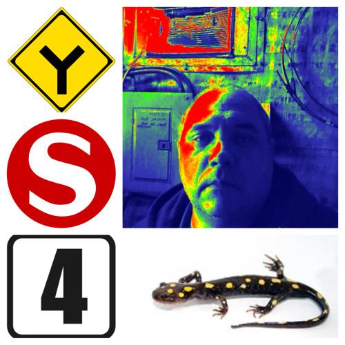 Yellow Salamand'r 4 - 4 R'dnamalas Wolley
