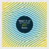 Whut It Iz Feat Fresh Daily (VECT Remix)