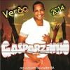 Banda Gasparzinho Verão 2014 - Música Nova  ♪  PATROA NO PODER ♫