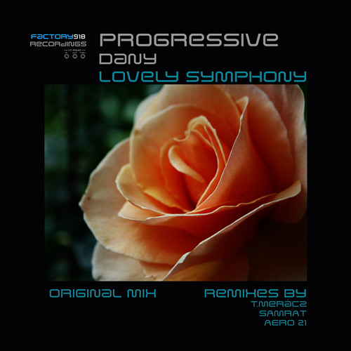 Dany - Lovely Symphony - TMeracz Analog Herz Remix