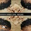 Year Of The Fire Sheep- Kendrick Lamar ft ScHoolboy Q