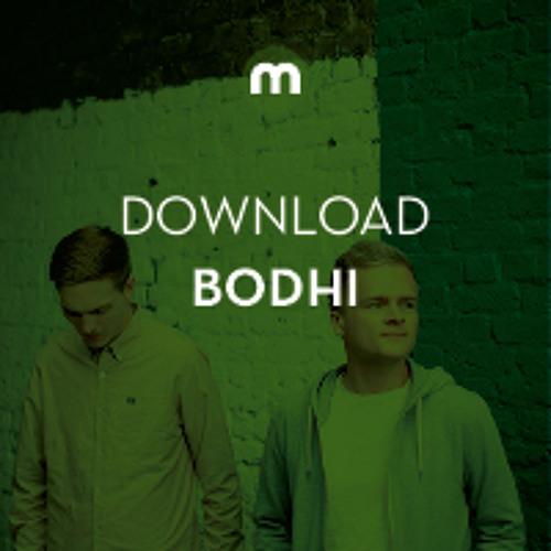Download: Bodhi 'Entropy'