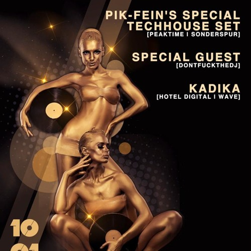 PIK-FEIN @ HOUSE SPIRIT⎮ Stereobar - Frankfurt ⎮ 10.01.14