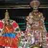 28.KARAVAIGAL - Thiruppavai - Sudha