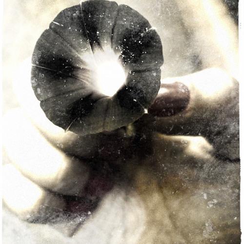 How by Regina Spektor.- Vocal Cover
