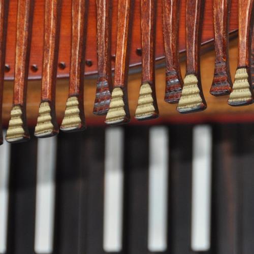 Sonata in G minor for nyckelharpa and harpsichord