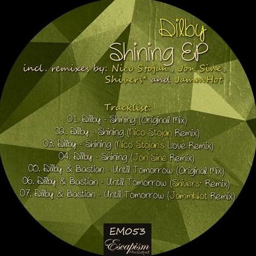 Shining (Nico Stojan Remix)