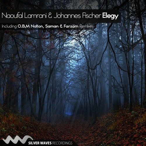Naoufal Lamrani & Johannes Fischer - Elegy [ Silver Waves Recordings] 'PREVIEW'