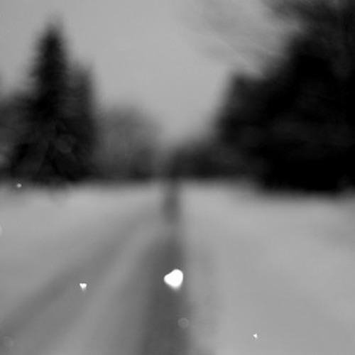 SNOW MOTION