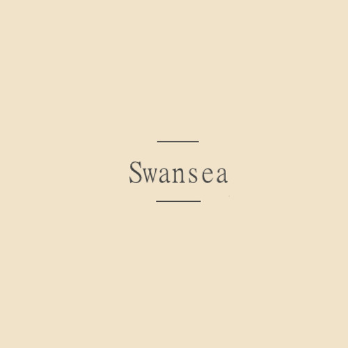 Swansea [Bombay Bicycle Club]