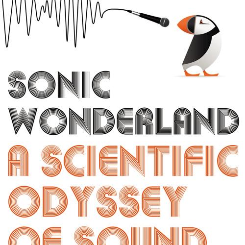 Sonic Wonderland – Burping Sand Dune