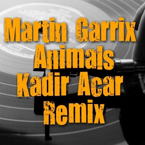 Martin Garrix - Animals ( Kadir ACAR Remix)