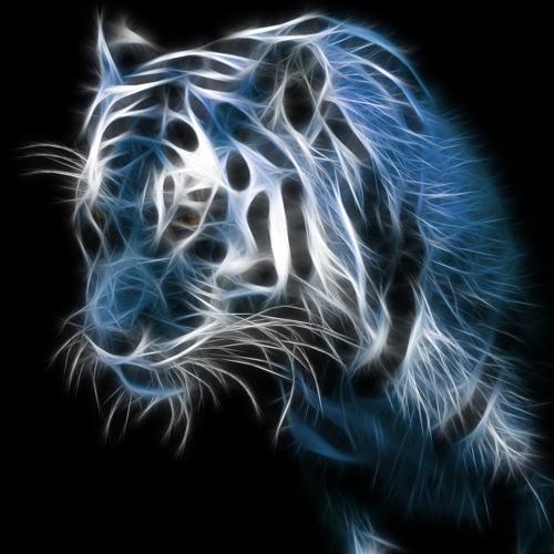 Tiger Electro Happy Hour