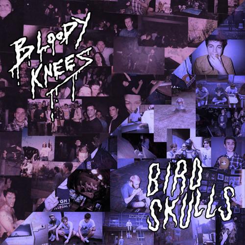 "Bloody Knees / Birdskull_split 7""_2014"