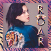 Roar By Katy Perry (Cover)