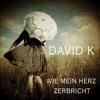 Download David K.  - Wie mein Herz zerbricht (Januar 2014) Mp3