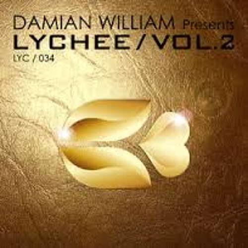 Damian William - Quantum (Johnny Work Remix) ** FREE DOWNLOAD ** [Lychee Records]