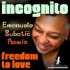 Incognito - Freedom To Love (Emanuele Subotić remix)
