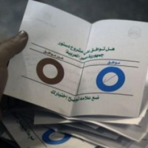 EGYPT referendum interview of Shashank Joshi