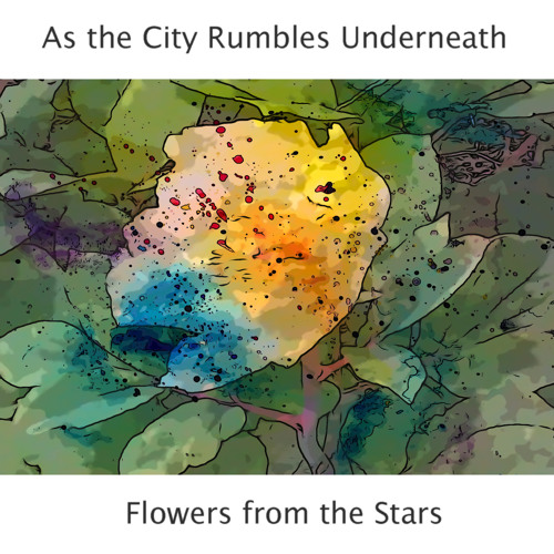 Flowers from the Stars