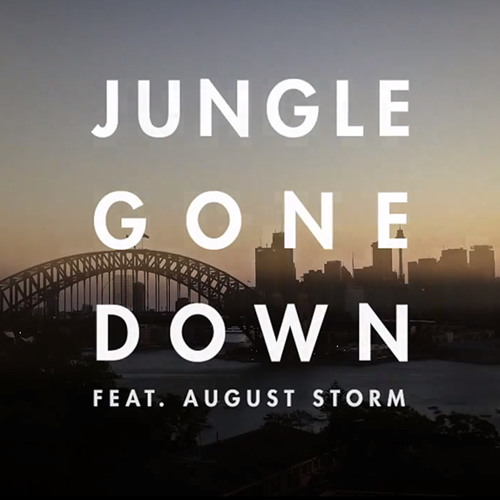 'Jungle Gone Down' feat. August Storm - OUT NOW