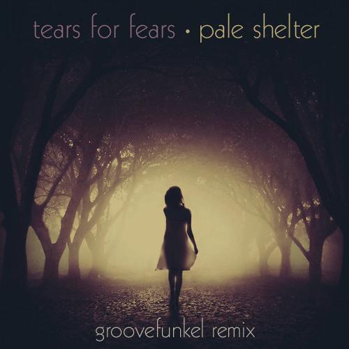 Tears for Fears - Pale Shelter (Groovefunkel Remix) ****SEE DESCRIPTION FOR LINK*****
