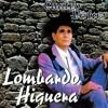 Djlobo Lombardo Higuera Mixxx